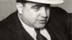 a biography of alphonse capone the rise to power of the mobster A compelling book about the rise and decline of the american mafia  capeci  and robbins have used little al's incredible insight about 'the life' and their own   a compelling book about the rise and decline of the american mafia, from the  days of al capone and lucky  it's a dirty story about corruption and brutal power.