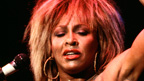 the life and legacy of tina turner Craig was born when tina was 18  before she married ike turner once tina and ike wed, ike adopted craig once tina and ike wed, ike adopted craig his biological father was a saxophonist named.