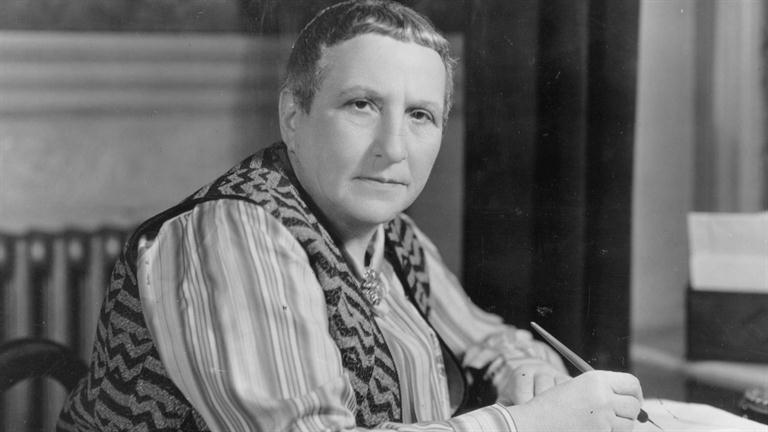 critical essays on gertrude stein